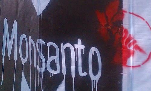 Reclaman a Scioli que exhiba las declaraciones de impacto ambiental de las plantas de Monsanto