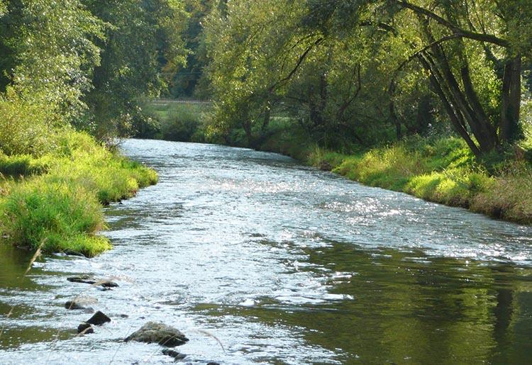 Plan-Hidrológico-para-la-Cuenca-del-Segura