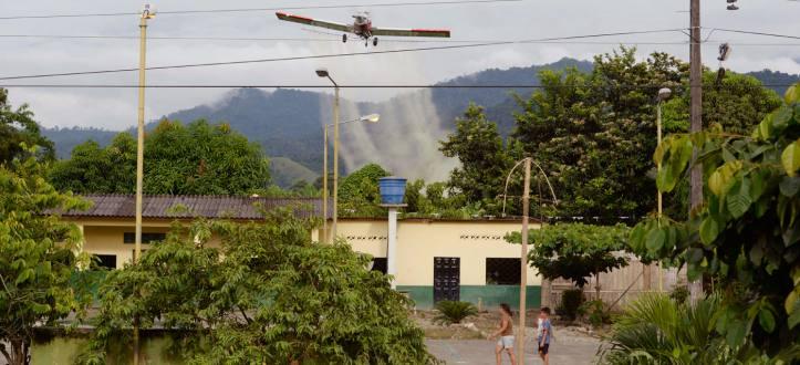Brasil Fumigacin Junio