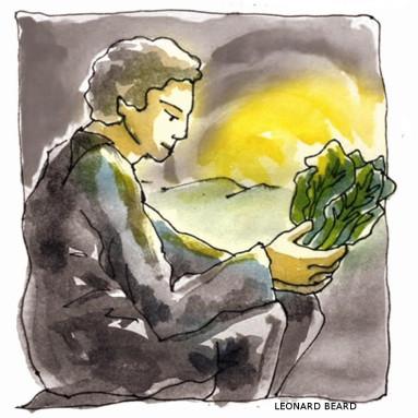 ilustracion-monra-1466002439414