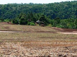 (Imagen: En América del Sur, Brasil, encontramos una frecuencia de uso de Roundup de Monsanto especialmente alta. Es el pesticida más conocido con el ingrediente activo glifosato que se acumula en el suelo, las plantas y las aguas subterráneas con terribles consecuencias.)