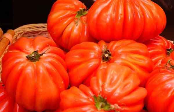 tomaquet-cor-bou