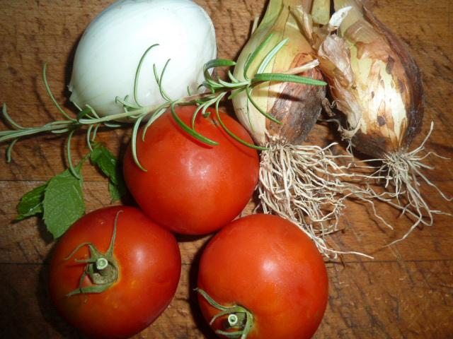 tomates cebollas