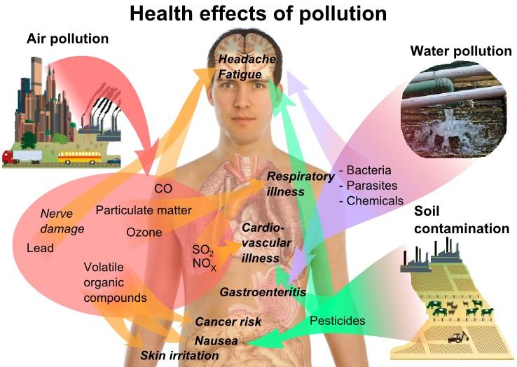 efectospolucion