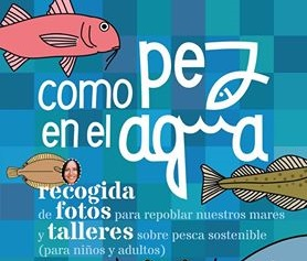 como-pez-ceida-2-7