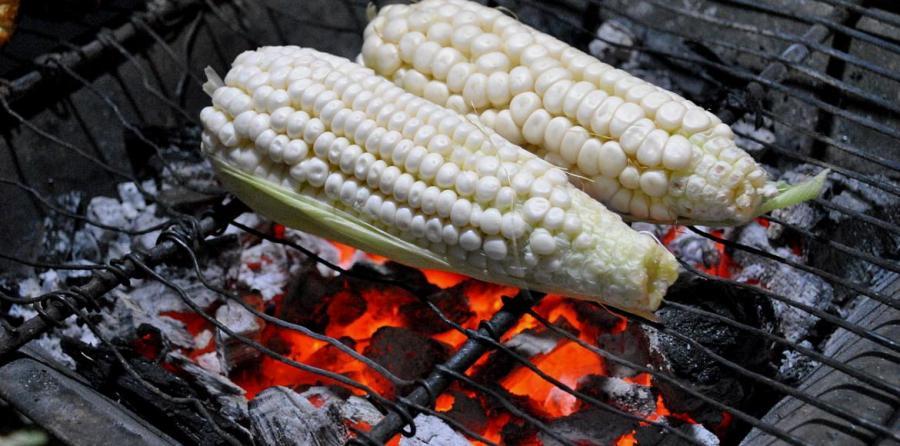 20170210-mexico-bloqueo-cultivo